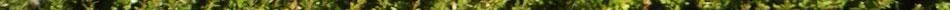 Free Ahyran Astyn Videos from Aziani.com